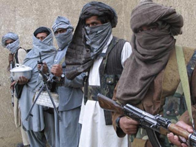 جاوید فیصل:طالبان سولېته ژمن ندي