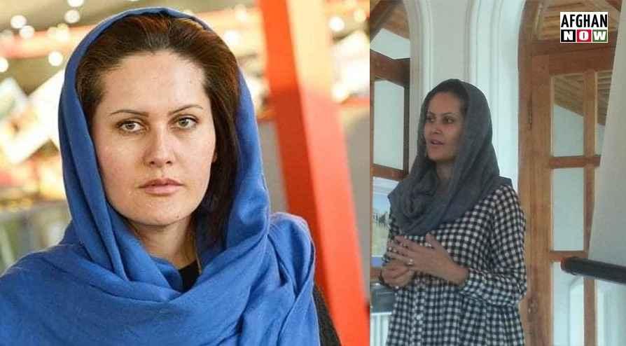 افغان فلم مشره:حکومت دې سېنما نه ورانوئ، موږ ته یې وسپاری