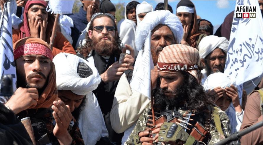 طالبانو د افغان ځواکونو سره د ناټو پر مرسته تنقید کړی