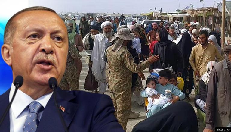 اردوغان: ترکیه  نور افغان کډوال نه قبلوي
